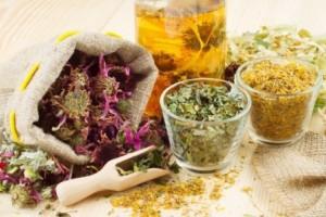 """Травотерапия: как подобрать """"свое"""" растение."""
